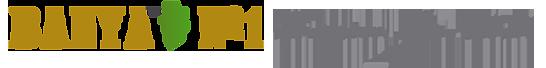 Banya No.1 logo